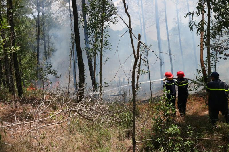 Liên tiếp xảy ra nhiều vụ cháy rừng tại Huế  -0