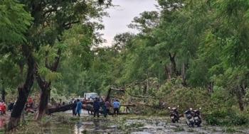 Bão số 5 gây thiệt hại nặng ở Thừa Thiên Huế