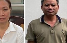 Nâng khống hàng chục tỷ đồng giá cây xanh ở Hà Nội: Khởi tố 4 bị can