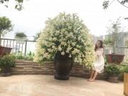 Sửng sốt với bình hoa loa kèn 1000 bông 'mười phân vẹn mười' của bà mẹ Hà Thành