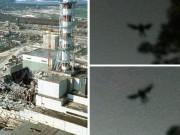 quai vat huyen thoai xuat hien ngay truoc tham kich hat nhan chernobyl