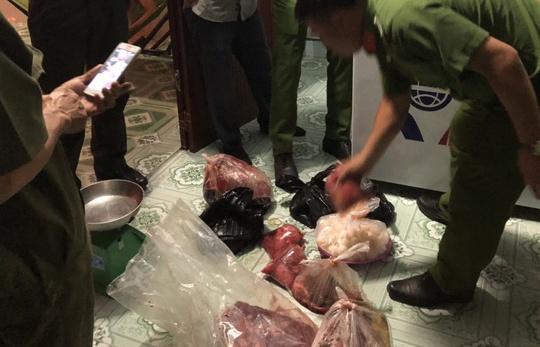 Tàng trữ hàng chục kg thịt, trứng vích quý hiếm ở Côn Đảo