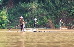 nguoi dan dien bien bat chap tinh mang lao vao dong nuoc lu muu sinh