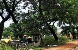 """TP.HCM: Nghĩa trang, bãi rác được """"hô biến"""" thành... khu đô thị hạng sang"""