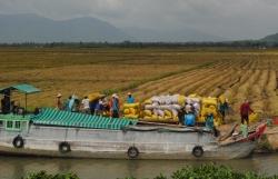 Trăn trở với Đồng bằng sông Cửu Long