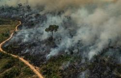 Ô nhiễm không khí gia tăng tại rừng Amazon