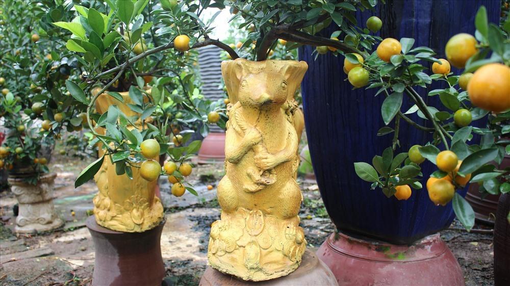 quat canh bonsai bac trieu hut mat nguoi xem