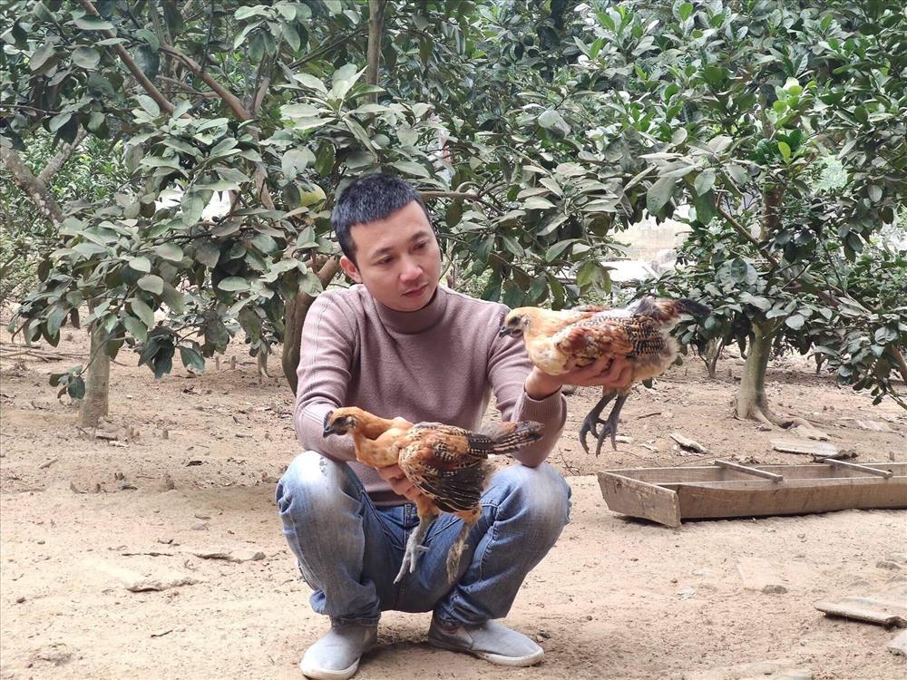 250 nghin dong mot can ga den van chay hang dip tet