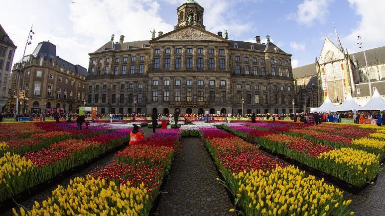 Quảng trường Dam nơi diễn ra lễ hội, hơn 200.000 bông hoa tulip đủ màu sắc được sắp xếp thành một bức tranh tuyệt đẹp rực rỡ. Ảnh: AP