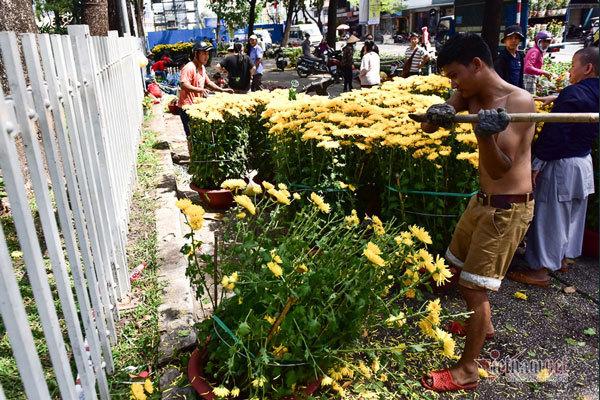 khong chiu ban re tieu thuong dap bo hoa e ngay 30 tet