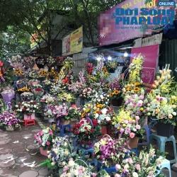 nhon nhip thi truong hoa tuoi dip 2011