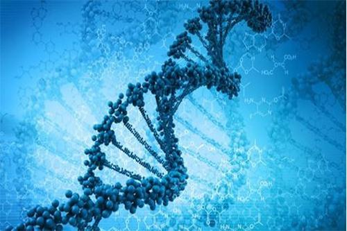 Giải mã gene giúp phát hiện và tầm soát ung thư sớm. Ảnh minh họa