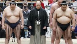 vi sao vo si sumo nhat ban co the nang den 400kg