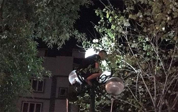Xử phạt nam thanh niên sáng sớm đã la hét trên... cột đèn