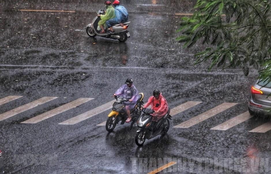 Thời tiết 16/9: Hà Nội mưa to vào sáng sớm, Bắc Bộ và Bắc Trung Bộ mưa rào và dông