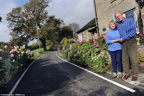 Cặp vợ chồng bị chính quyền ép chặt bỏ vườn hoa vì quá đẹp