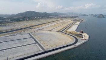 Doanh nghiệp san lấp trái phép 16.000 m2 ở vịnh Bái Tử Long