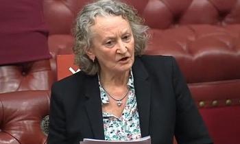 Nghị sĩ Anh đề xuất cấm đàn ông ra đường sau 18h