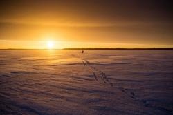 Ghi nhận nắng nóng kỷ lục ở một trong những nơi lạnh nhất trái đất
