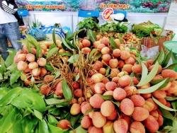 Mỗi tuần, Việt Nam sẽ xuất khẩu 18 tấn vải tươi sang Australia