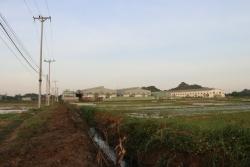 """Hà Nội: Hàng trăm mẫu ruộng bị """"bức tử"""" vì nguồn nước ô nhiễm"""