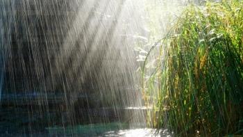 Miền núi Bắc Bộ mưa rất to, nhiều nơi trên 200mm