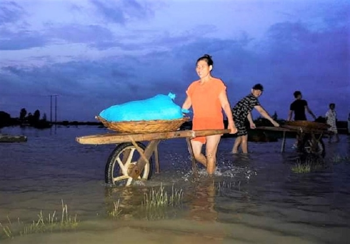 Ảnh: Nhà ngập sau mưa lớn, người dân huyện Quỳnh Lưu, Nghệ An sơ tán tránh lũ - 12