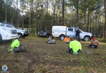 Australia bắt 14 người Việt, tịch thu hơn 13.000 cây cần sa