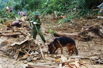 Chó nghiệp vụ tìm người mất tích ở Trà Leng