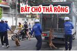 dan cho can chet be trai 7 tuoi o hung yen phan no viec nuoi cho tha rong