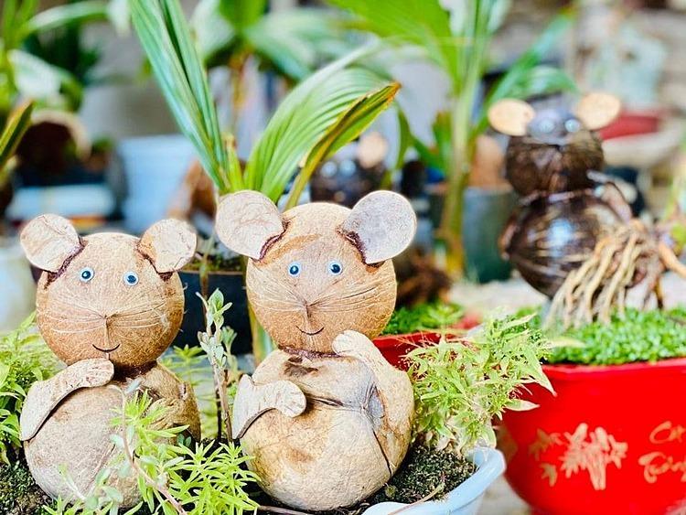 dua bonsai hinh chuot dat khach
