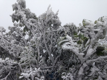 Thời tiết ngày đầu năm mới 2021: Bắc Bộ, Trung Bộ rét đậm, rét hại, có nơi dưới 0 độ
