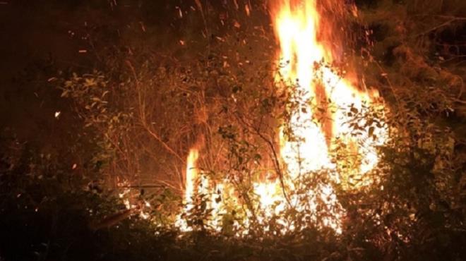 Hà Nội: 700 người được huy động dập tắt cháy rừng cạnh trường bắn Sóc Sơn