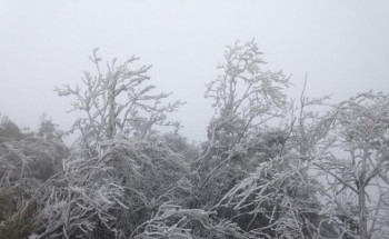 Đỉnh Mẫu Sơn -1,4 độ C, rét đậm, rét hại bao trùm toàn miền Bắc