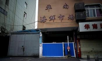 Điều tra kết luận WHO, Trung Quốc chậm phản ứng với đại dịch