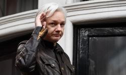 cha ong trum wikileaks len tieng sau khi chung kien con bi bat giu