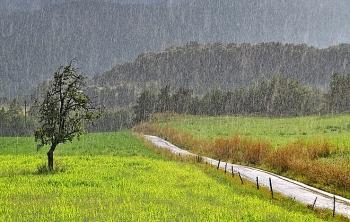 Vùng núi Bắc Bộ cảnh báo mưa giông, lốc sét