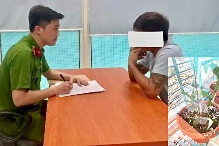"""Vụ nhiều cá nhân """"tố"""" bị lừa tiền tỷ ở Ứng Hòa, Hà Nội: Chủ vườn lan không bỏ trốn!"""