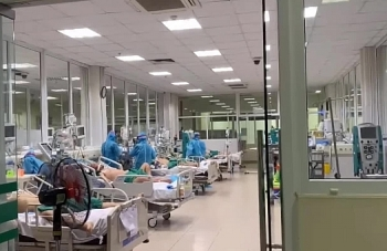 178 bệnh nhân COVID-19 tiên lượng nặng và rất nặng