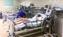 Cảnh giác bệnh viêm não Nhật Bản tấn công trẻ nhỏ vào mùa hè