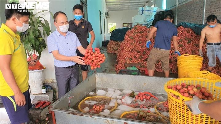 Bắc Giang tiêm vaccine COVID-19 cho 367 thương nhân và lái xe thu mua vải thiều - 2
