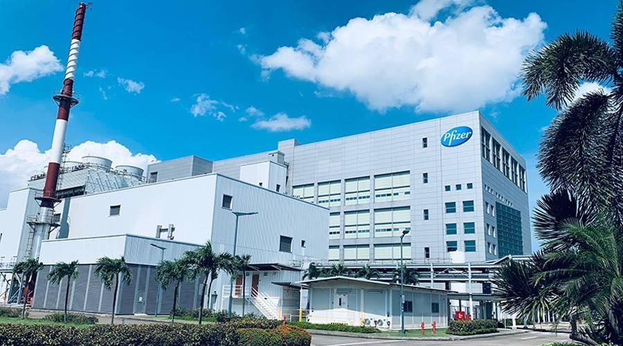 Lý do Singapore được chọn sản xuất vaccine Covid-19 Pfizer