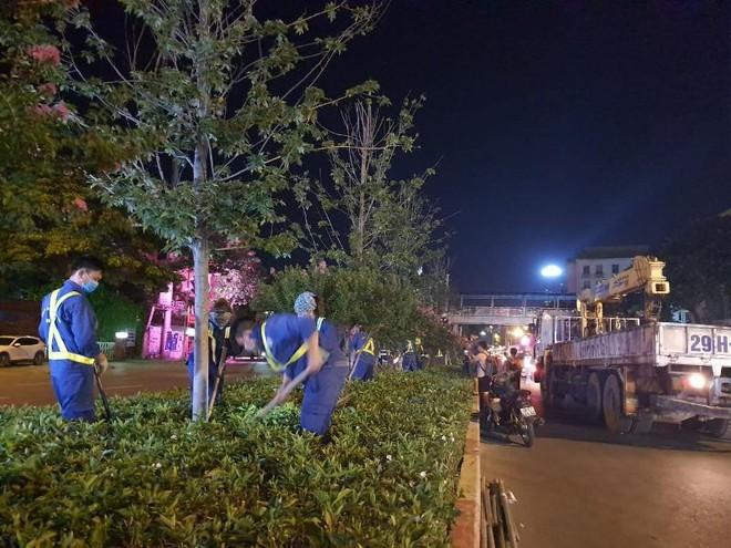 Bắt đầu đánh chuyển, thay thế cây phong trên đường Nguyễn Chí Thanh và Trần Duy Hưng ảnh 1