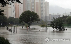 Bão và mưa lớn tàn phá nhiều nơi của Hàn Quốc