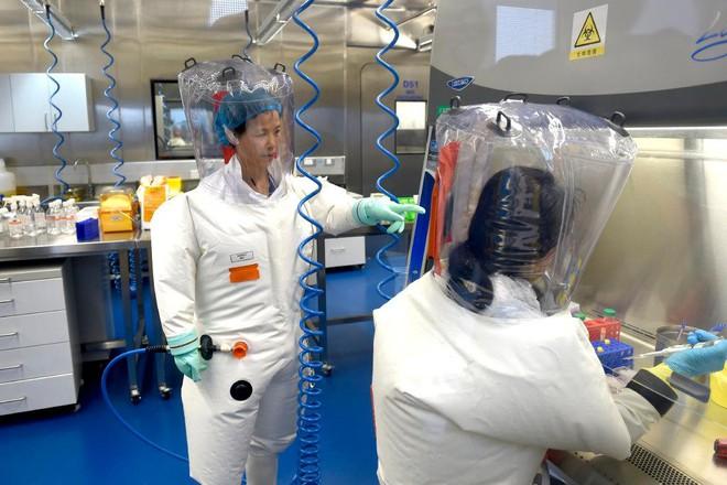 Nhà khoa học nước ngoài cuối cùng và duy nhất tại phòng thí nghiệm Vũ Hán lên tiếng ảnh 2