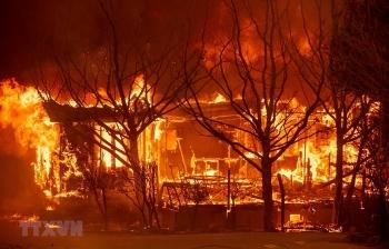 Mỹ: Hơn 7.000 vụ cháy rừng thiêu rụi hơn 600.000ha tại California