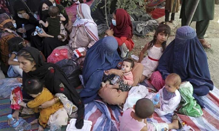 Bi kịch của gia đình Afghanistan sống dưới thời Taliban - 1