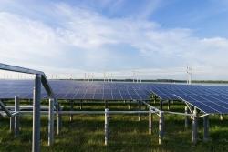Nhà máy điện mặt trời lớn nhất Đông Nam Á mọc trên đất ngập mặn