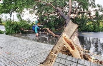 Vừa vào đất liền, bão số 5 suy yếu thành áp thấp nhiệt đới