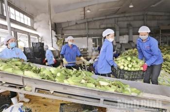Thủ tướng chỉ thị: Người tiêm đủ 2 mũi vaccine được sản xuất, tiêu thụ hàng hóa